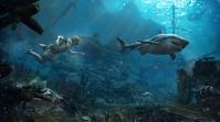 ACGA_SP_51_Underwater_SharkAlert