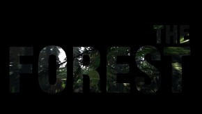 The Forest Preview: Cannibals andBugs
