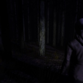 Video Preview: Through The Woods